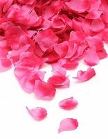 Лепестки роз (Малиновые)  FL001