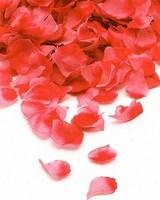 Лепестки роз  (Коралловые)  FL001