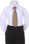 Детский галстук для мальчика Шампань WT-06