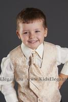 Костюм для мальчика Жилетка с Брюками (Золотистая) KD-5005